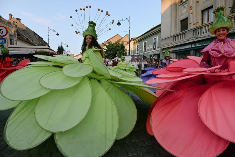 Samba Florilor_Maxim Shuz5